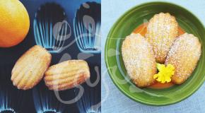 عکاس و شیرینی فرانسوی